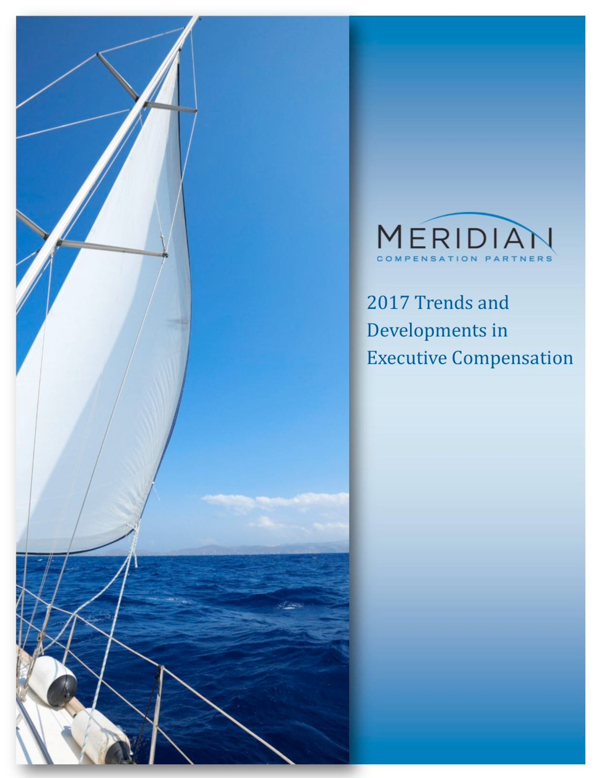 2017 Trends and Developments in Executive Compensation (PDF)