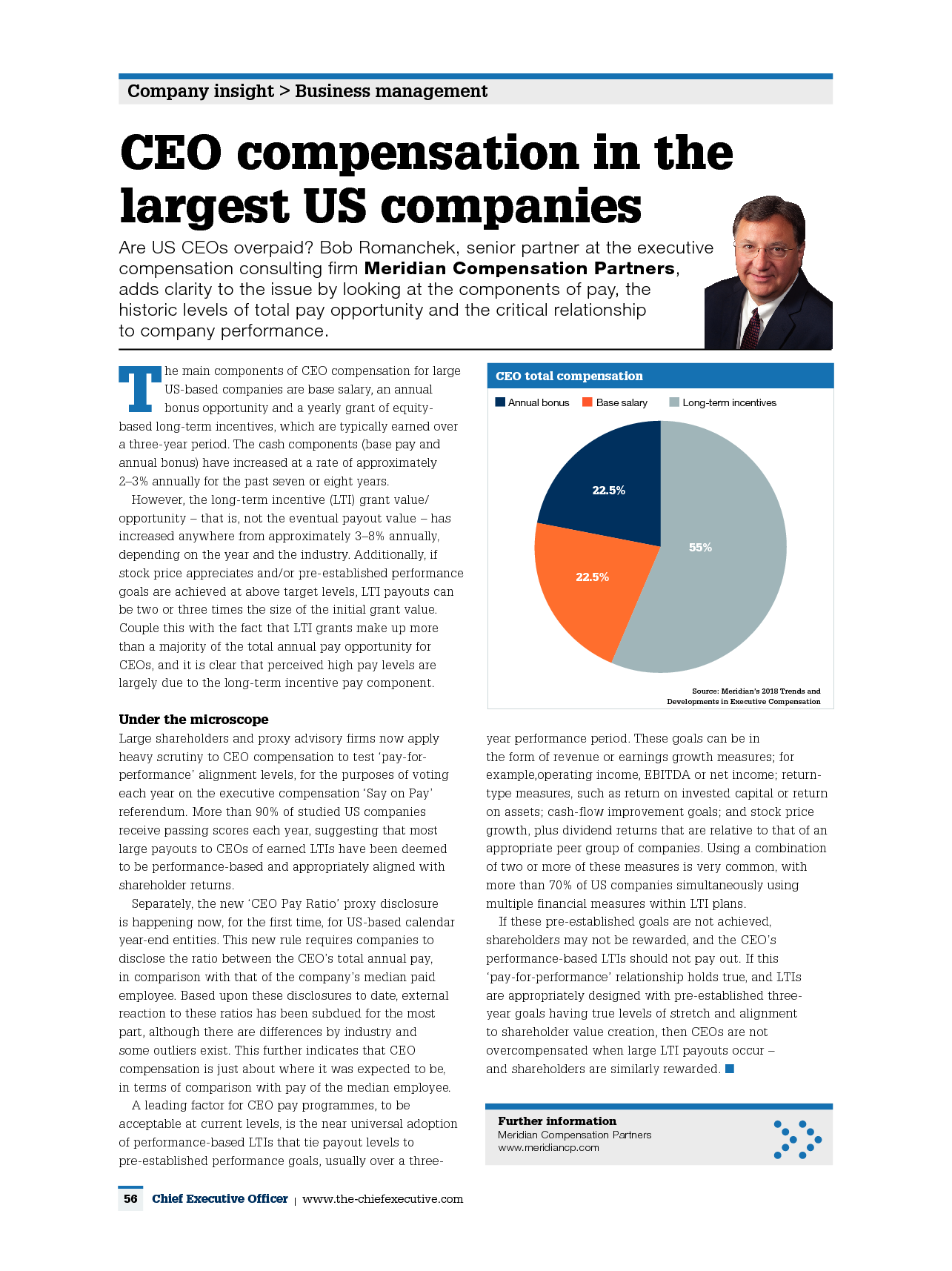 CEO Compensation in the Largest US Companies (PDF)