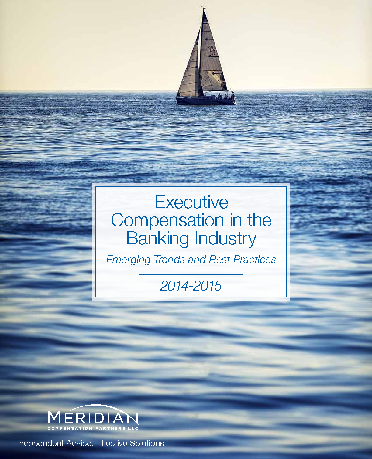 Executive Compensation in the Banking Industry (PDF)