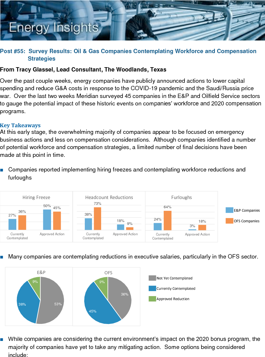 Survey Results: Oil & Gas Companies Contemplating Workforce and Compensation Strategies (PDF)