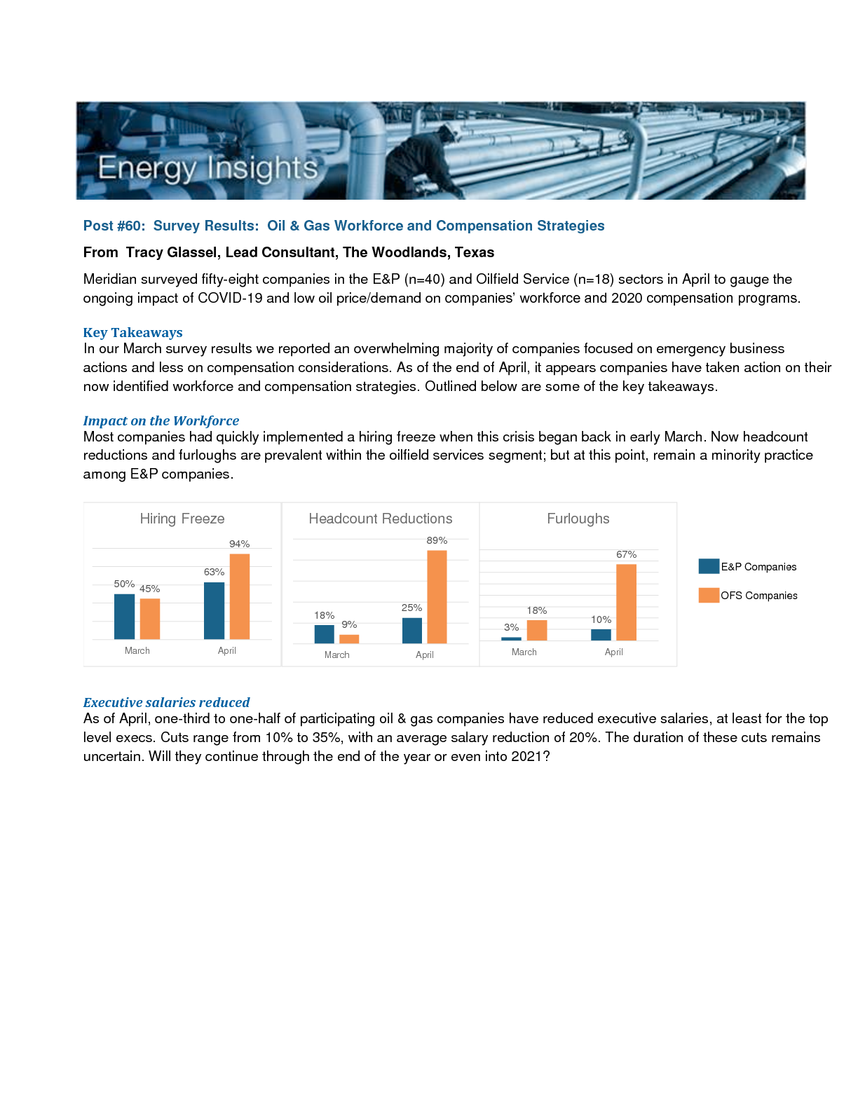 Survey Results: Oil & Gas Workforce and Compensation Strategies (PDF)